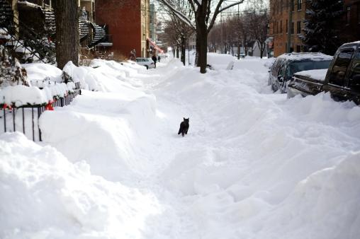 Montreal winter - december 2012